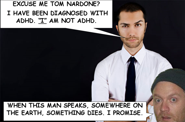 TOM-NARDONE-ADHD-KITTEN